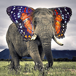 Butterphant Emoticon