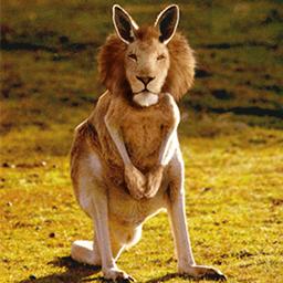 Kangarion Emoticon
