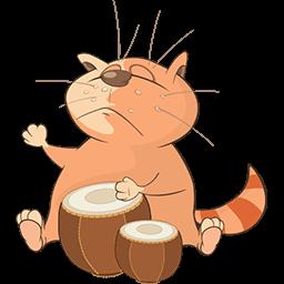 Bongosero Cat Emoticon
