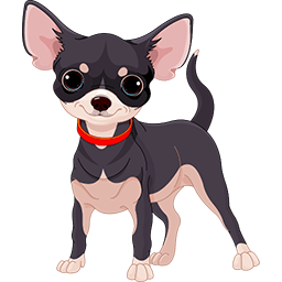 Chihuahua Baby Emoticon