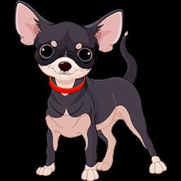 Chihuahua Baby Emoticon