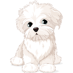 Curious Maltese Emoticon