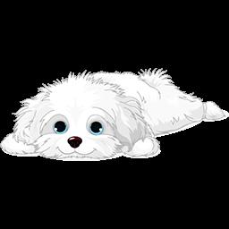 Resting Puppy Maltese Emoticon