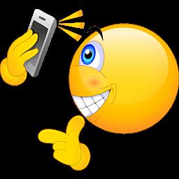 Selfie Smile Emoticon